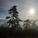 Ha felszáll a köd és kisüt a nap, akár 10 fok is lehet