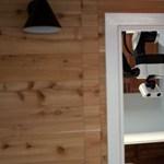 Plafonról lelógó házi robot: mosogat, elpakol