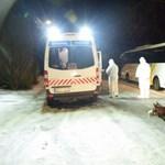 Megölt egy embert, majd magával is végzett egy osztrák férfi Káptalanfán