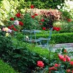Itt a tavasz! Hasznos tippek kerthez, erkélyhez