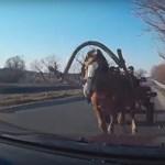 Megbokrosodott lovak okoztak kis híján tragédiát az országúton - videó