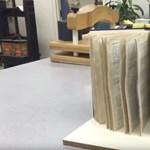 Ejtett már bele könyvet a kádba vagy a pocsolyába? Mutatjuk, hogy mentheti meg