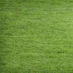 BEK-győztes focista, Bölöni László lehet Marosvásárhely polgármestere