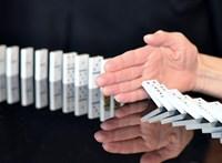 Ha ez igaz, tényleg végünk: a klímaváltozás beindíthatja a kihalási dominóeffektust