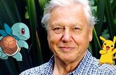 Cápafoggal lepte meg David Attenborough Vilmos herceg gyermekeit