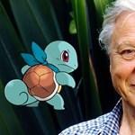 Csigát neveztek el David Attenborough-ról