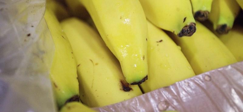 Ásványvizet, csirkemellet és banánt rendelünk házhoz a Tescótól