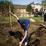 7 négyzetméteres városi zöldségeskerttel lehet pályázni a kormánynál