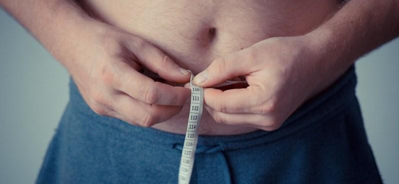 Megfejtették az elhízás kevesek által ismert forrását