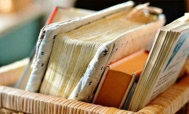 Kétperces műveltségi teszt a költészet napján: felismeritek ezeket a verseket?