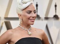 Rálőttek Lady Gaga kutyasétáltatójára, a kutyákat elrabolták