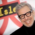 Jeff Goldblum zebrának öltözött, és jól áll neki