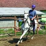 Mennyibe kerülnek a hazai lovastáborok?