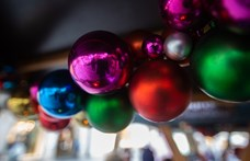 Kicsit elfajult a karácsonyi buli: leharapta az orrát