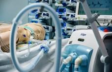Lélegeztetőgépre kérnek pénzt csalók egy önkormányzati cég nevében