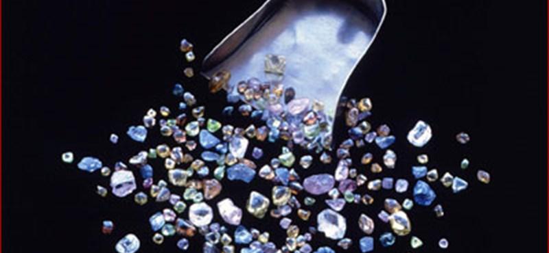 Két csodálatos és ritka gyémántot árvereznek el