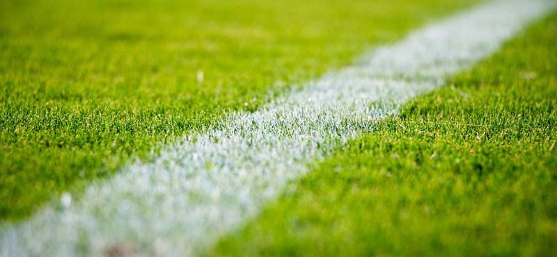 Legkésőbb június 13-án újraindulhat a magyar foci