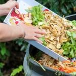 Egy amerikai államban mostantól tilos zöldségdarabokat a kukába dobni