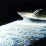 Tudósok megfejtették, mi történt az élővilággal a nagy meteoritbecsapódás után