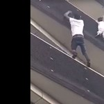 """""""Pókembernek"""" nevezik a bevándorlót, aki az épületen felmászva mentett meg egy gyereket Párizsban"""