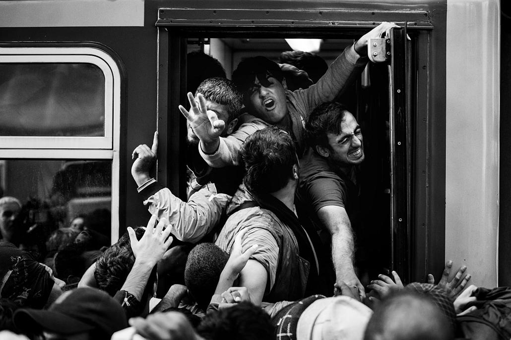 NE HASZNÁLD! -e_! sajtófotó 2015., díjazott képek - Menekültválság sorozat 1. helyezett - Krízis a Keleti pályaudvaron