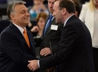Révész Sándor: A Fidesz és az Európai Néppárt: a máj s(z)ara