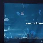 Óceánokban lebegő műanyagszemét – látványos installáció a Tropicariumban