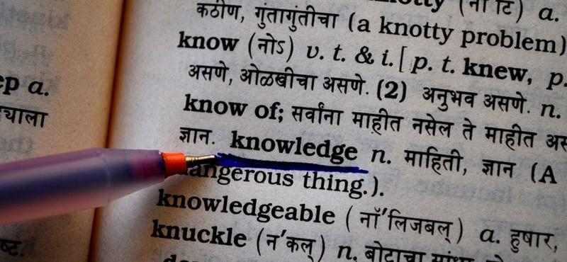 Többféle fordítást is kínál a Triplingo: újabb appot mutatunk