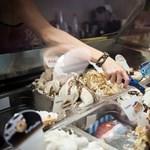 Thai masszázs, vilmoskörtés borhab vagy Eb-fagyi? – Kiderült, melyik lett az Év fagylaltja