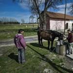 Itt a legújabb magyar mélyszegénységi adat
