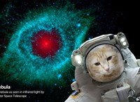Szelfizne a világűrben? Ez sem lehetetlen a NASA ingyenes alkalmazásával