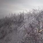 Ónos eső: Még mindig ne menjen túrázni a Pilisbe, Börzsönybe és a Bükkbe