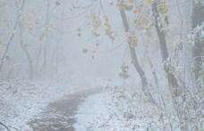 Levideóztuk az első havat a Normafán