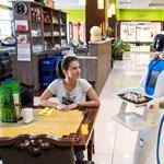 Robotpincér viszi ki az ételt egy győri kínaiban