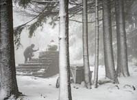 Így búcsúzik el a világ a fehér decemberektől