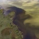 Fotók: Egészen zöld már a Balaton az algáktól