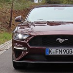 A pécsi köztemetőbe rontott egy Ford Mustang – fotók