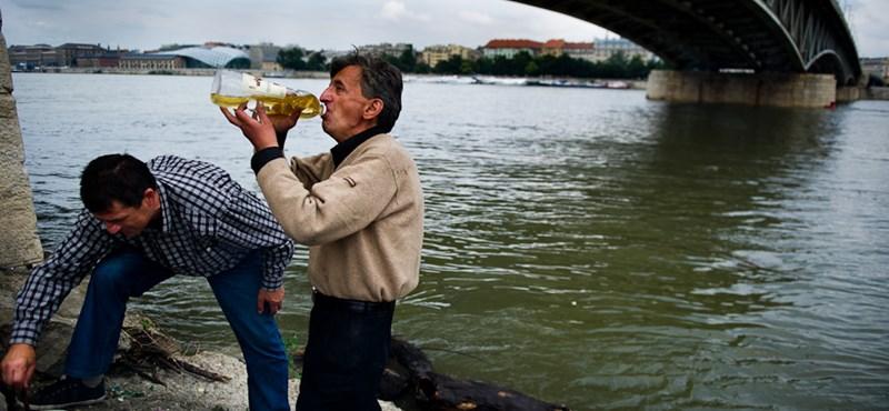 Pénzhiány miatt nem épül meg a tervezett park a Nehru parton