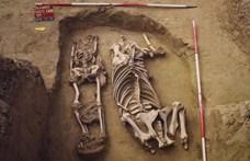 Ripityára törte a combcsontját az az avar kori lovas, akinek most mutatták be a sírját