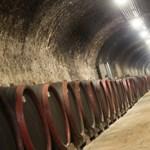 A borászat a magyar milliárdosok játszóháza
