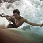 Fotográfia: Mark Tipple elbűvölő vízivilága