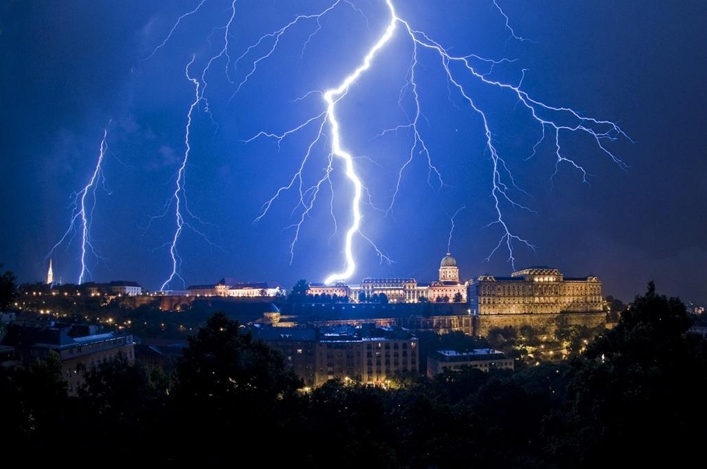 Sajtófotó 2011 - Nagyítás-fotógaléria - Természet és tudomány - egyedi - 1. helyezett: Töltés