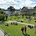 Te is jelentkezhetsz ingyenes dán egyetemekre