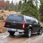 Nissan Navara V6 teszt: medvenász az avaron