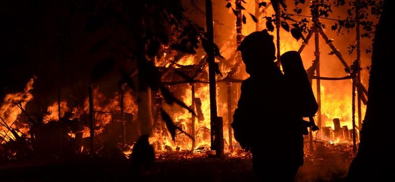 Porig égett a Bábszínház a Népligetben