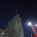 Nézze meg az ország karácsonyfáját a Kossuth téren! (fotókkal)