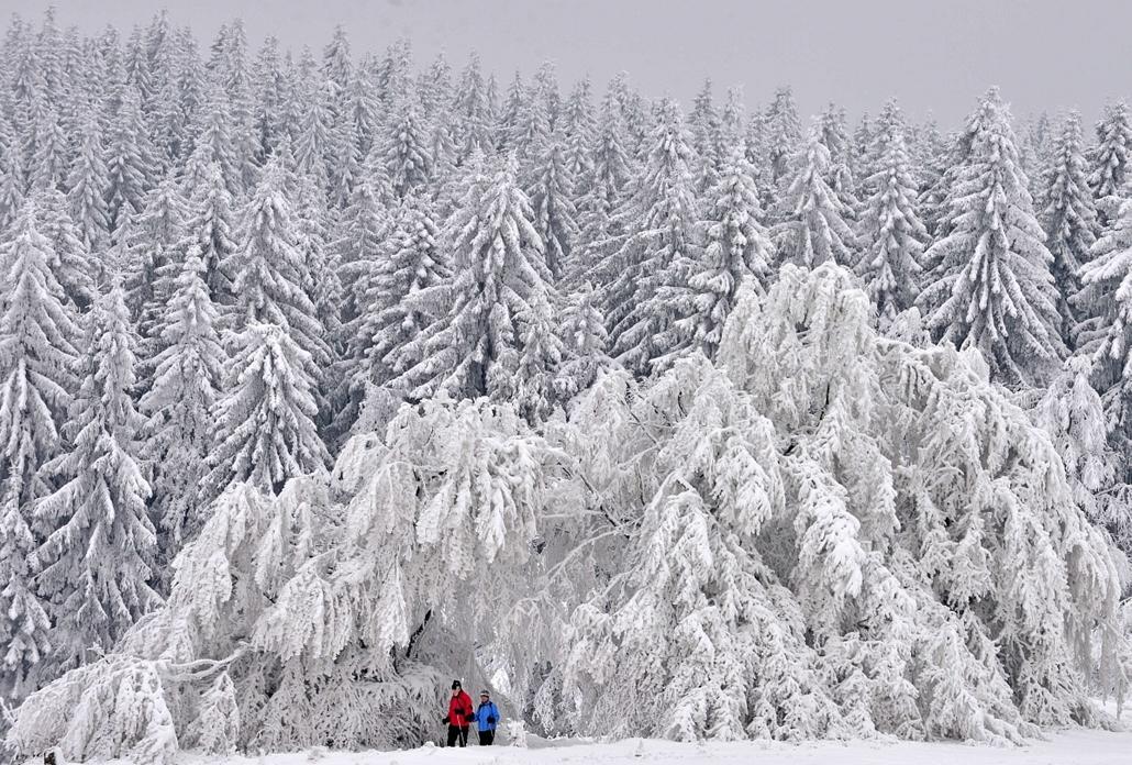 afp. hét képei - nagyítás - Masserberg, Németország, havazás, havas táj, 2014.01.29.