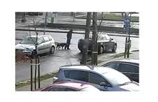 Kutyasétáltatás közben ütött meg egy embert ez a férfi