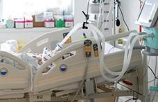 Egy budapesti óvónő volt az elhunyt koronavírusos kismama, a baba túlélte