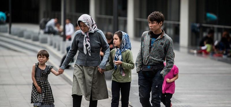 Hat tévhit a menekültekről